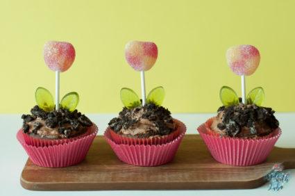 Drei Blumentopf Cupcakes nebeneinander